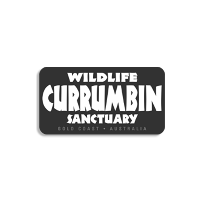 Currumbin